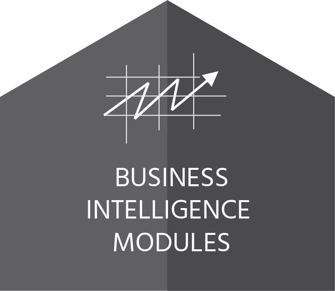 Business intelligence module